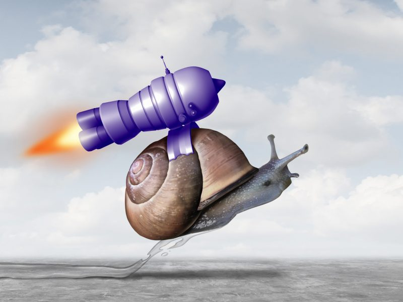 snail rocket hq